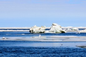 Iceberg in Arctic Ocean