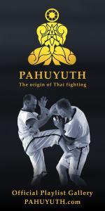 Pahuyuth-pinterest-pin-playlist-gallery