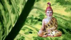 Pahuyuth-die-geschichte-von-gauw-Kampfkunst