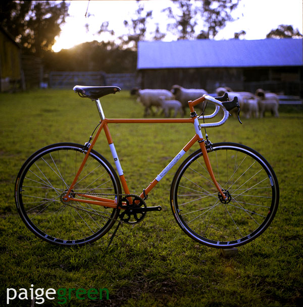 paigegreen-soulcraft_0011-web.jpg