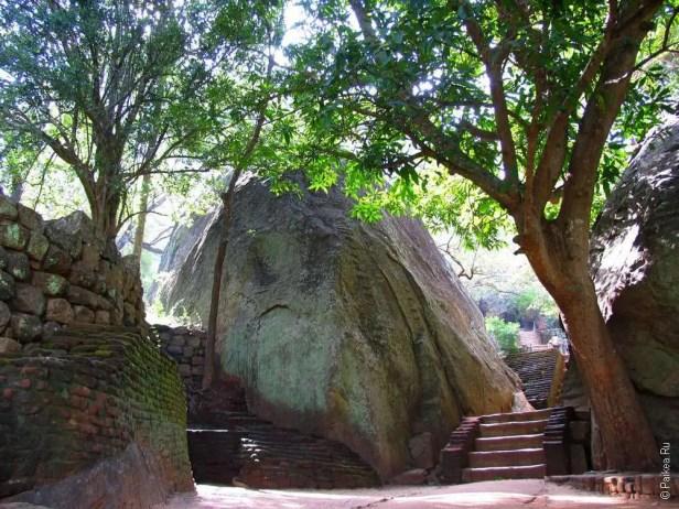 Террасный парк Sigiriya