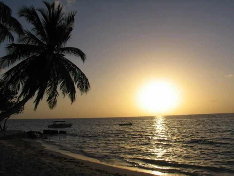 Мальдивы - остров Маафуши