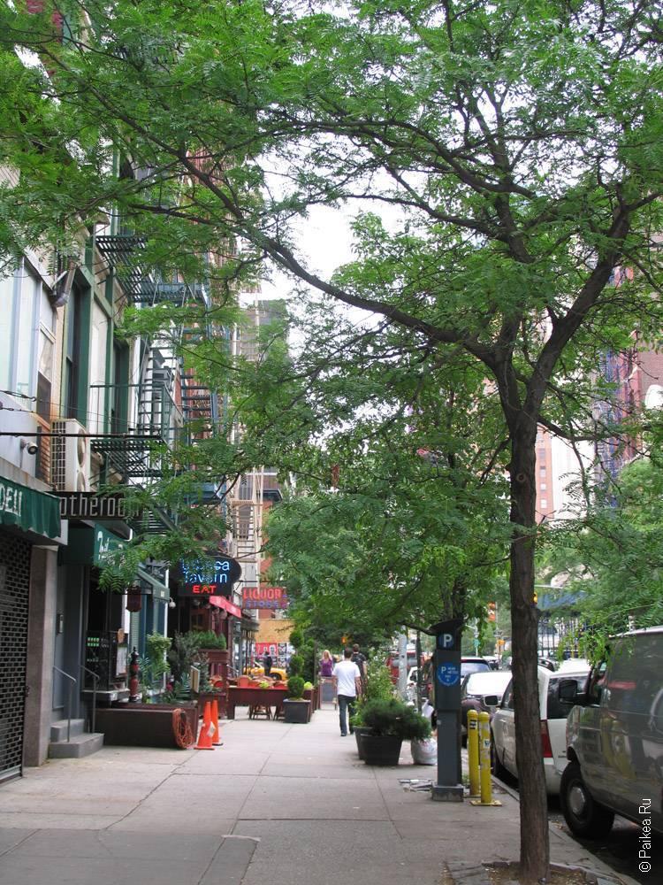 нью-йорк улица
