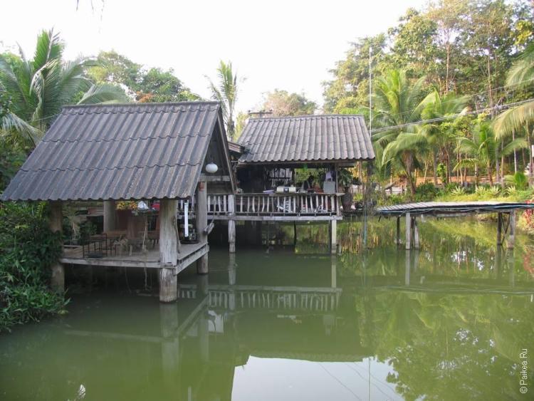 Таиланд, Та Сонг Янг (Thailand, Tha Song Yang)
