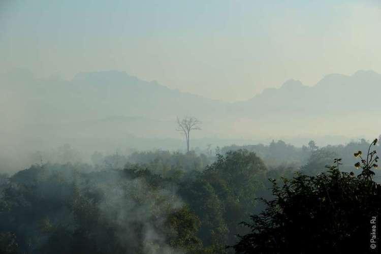 Чианг Дао утро