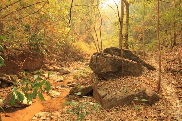 Таиланд - Пай - Водопад Мэ Йен (Thailand - Pai - Mae Yen Waterfall)