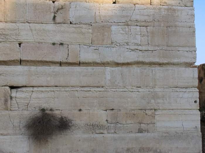 Нижняя часть кладки Храма Соломона в Иерусалиме, Израиль. Говорят, в подземелье фундамент состоит из еще более циклопических блоков