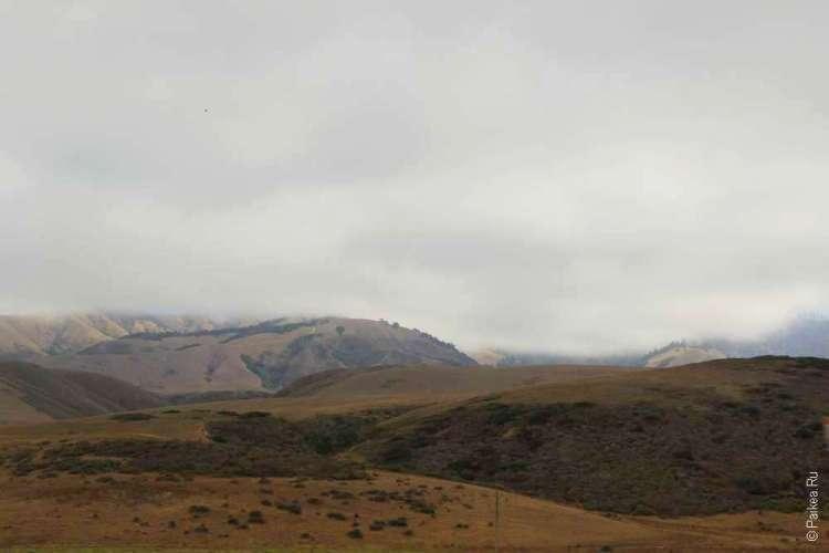 Туман в Калифорнии