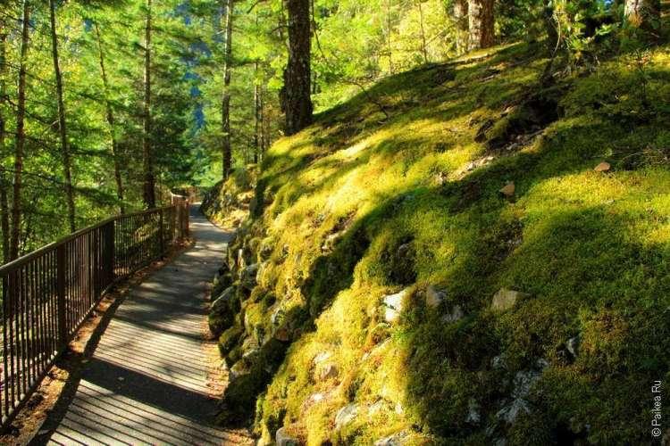Национальный парк Норт-Каскейдс, Северные Каскады, North Cascades National Park 02