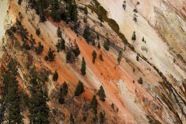 Гранд Каньон в национальном парке Йеллоустоун в США 03