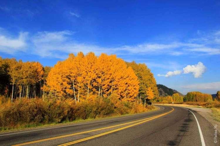 Дорога в осеннем Вайоминге