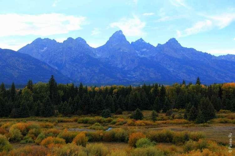 Синие горы над осенним национальным парком
