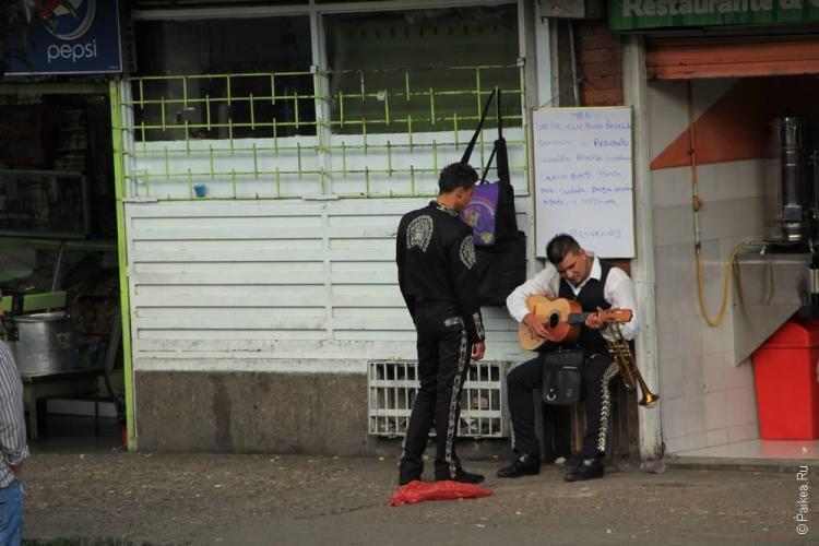 Этих музыкантов можно заказать на праздник
