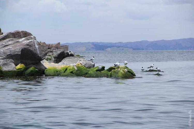 Вот оно, чудное озеро Титикака