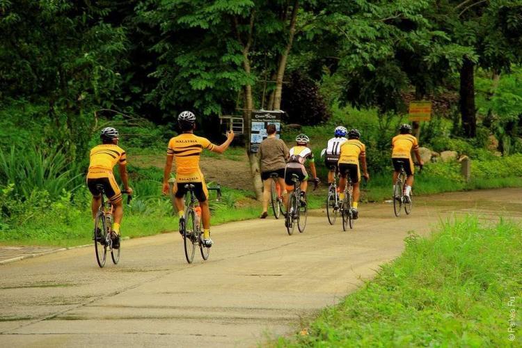 команда велосипедистов из малайзии