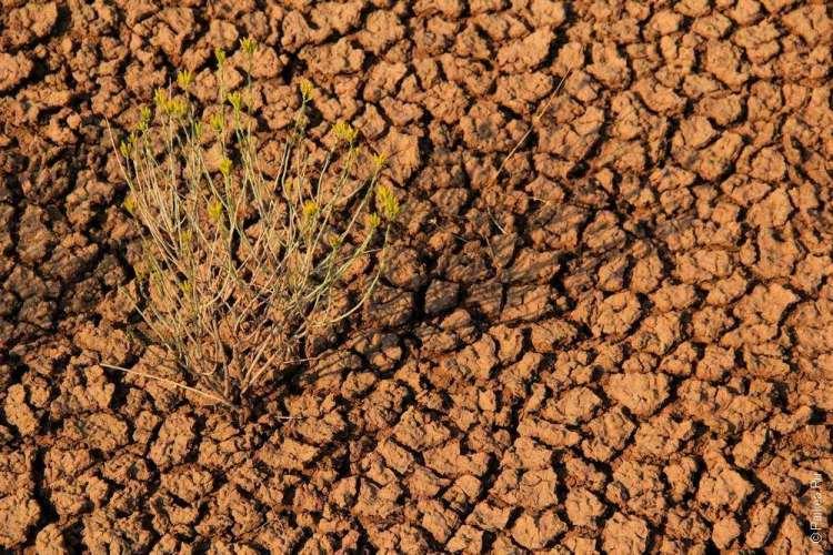 Глиняная поверхность холмов в Орегоне