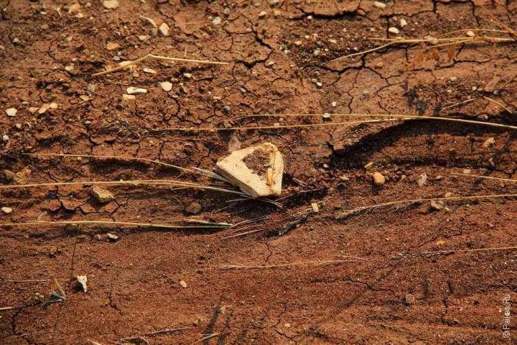 Ископаемый объект на трейле в Пейнтед хиллз в Орегоне