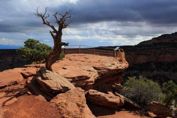 Живописная дорога Rim Rock Drive, Национальный памятник Колорадо, США 17
