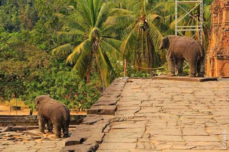 Статуи слонов на стенах пирамиды и пальмы