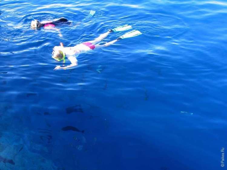 Развлечения на Мальдивах с детьми