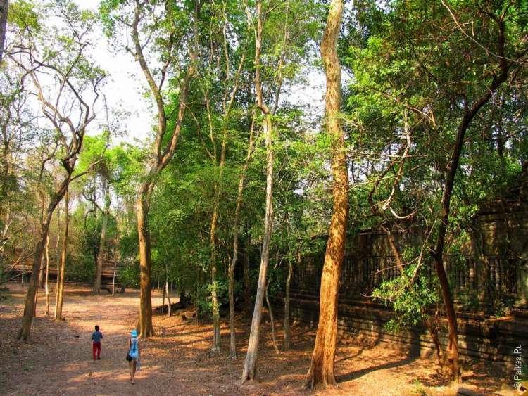 Экскурсия по дальнему храму Ангкора, Камбоджа