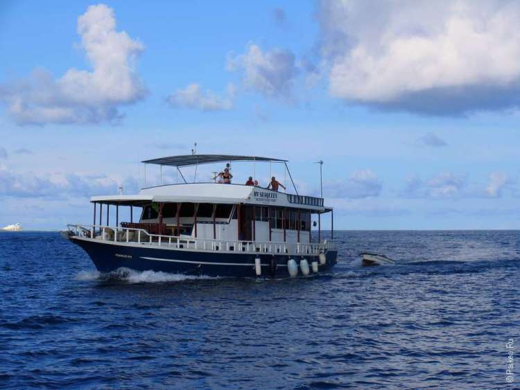 Отдых на Мальдивах самостоятельно