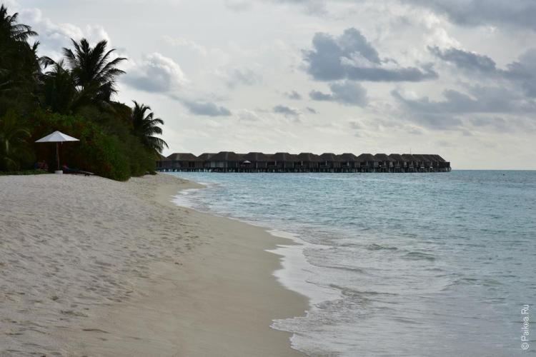 Сколько стоит отдых на Мальдивах цена