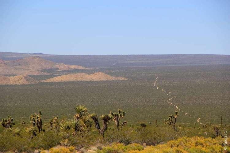 Пустыня Мохаве США фото