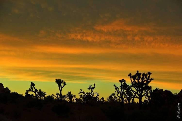 Красивый закат в Джошуа Три