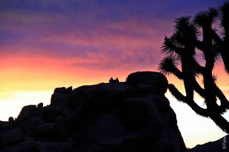 Национальный парк Джошуа Три, Калифорния