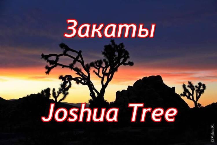 Закаты в Джошуа Три