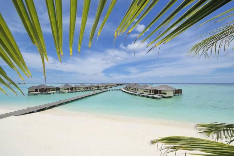 мальдивы отель paradise island