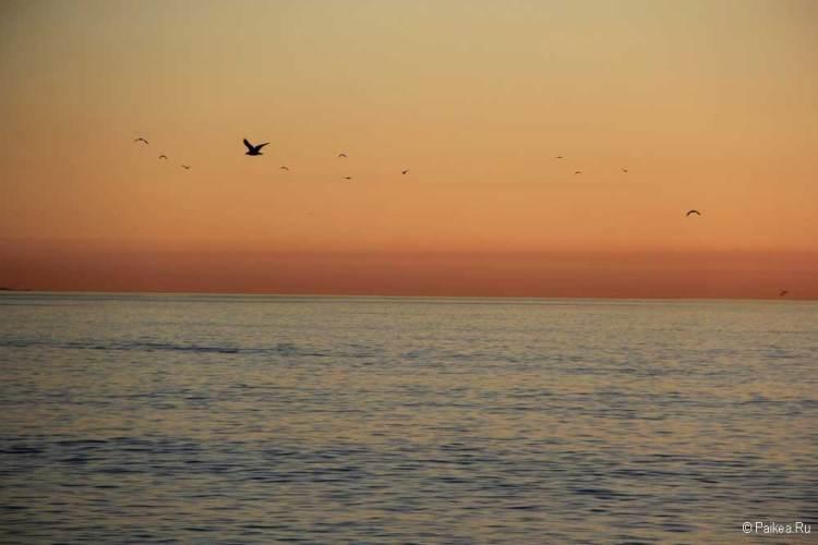 Океан в Лос-Анджелесе