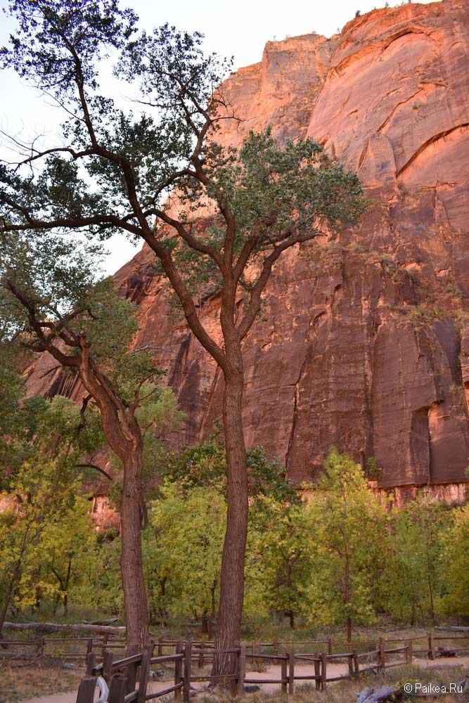красный каньон зайон