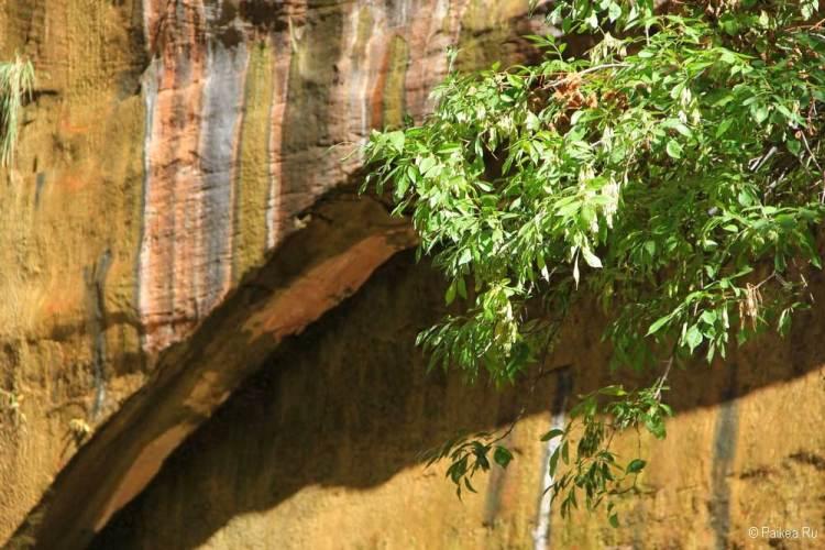 каньон зайон фото