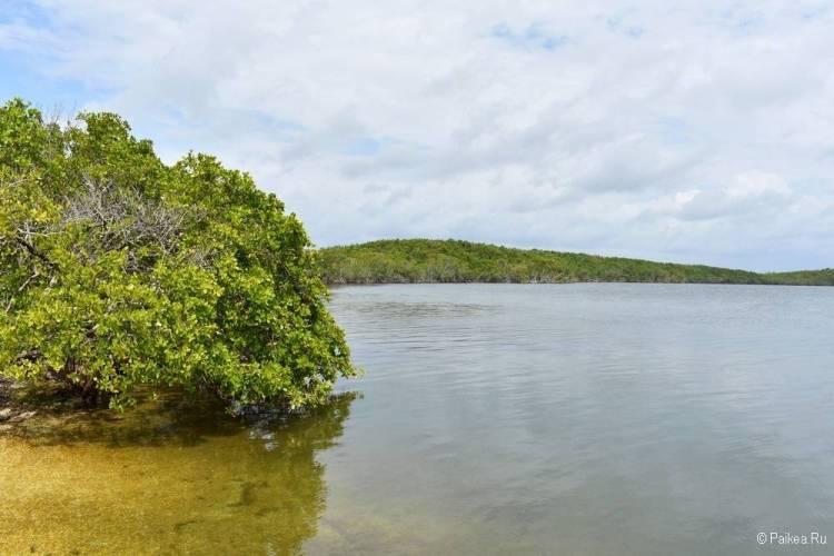 Флорида с детьми - в Майами и маршрут вокруг Орландо10