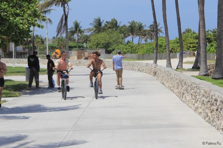 Флорида США 09