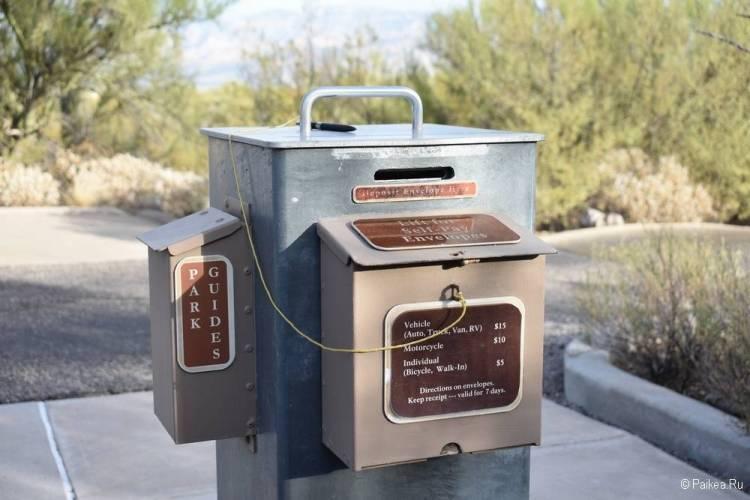Национальный парк Сагуаро, Аризона, США