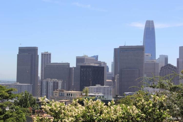 Башня Койт, Сан-Франциско 52