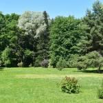 Поездка в Витебск - что посмотреть - Ботанический сад