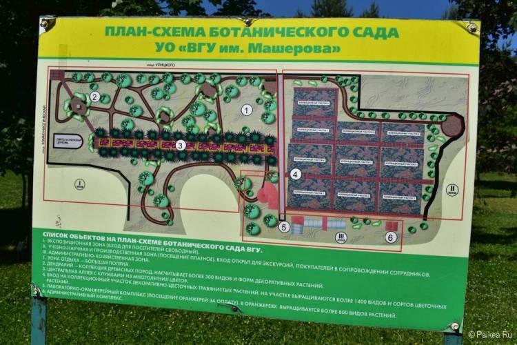 Витебский Ботанический сад