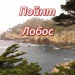 пойнт лобос (point lobos)