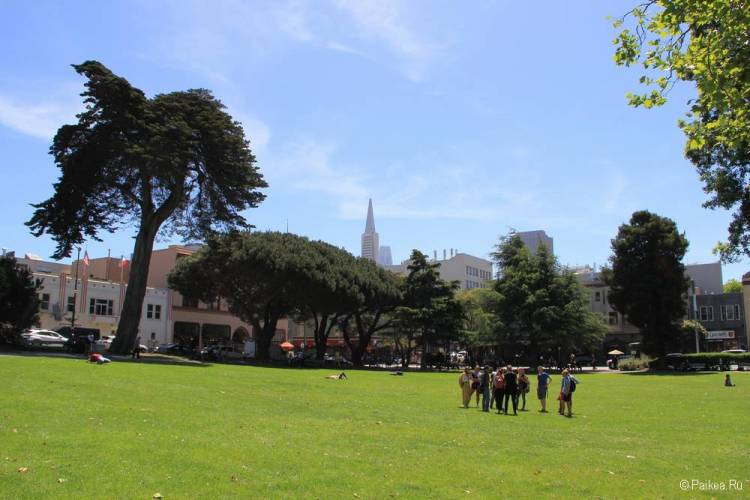 Вашингтон-Сквер в Сан-Франциско