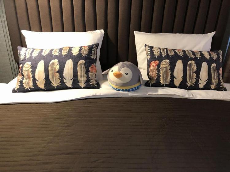 где остановиться в москве / гостевой дом 3 пингвина