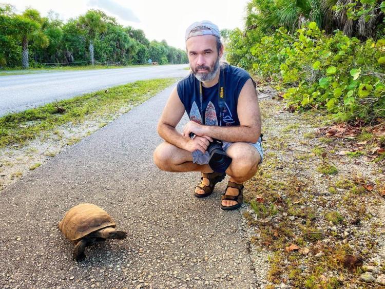 нейплс флорида сша черепаховый пляж