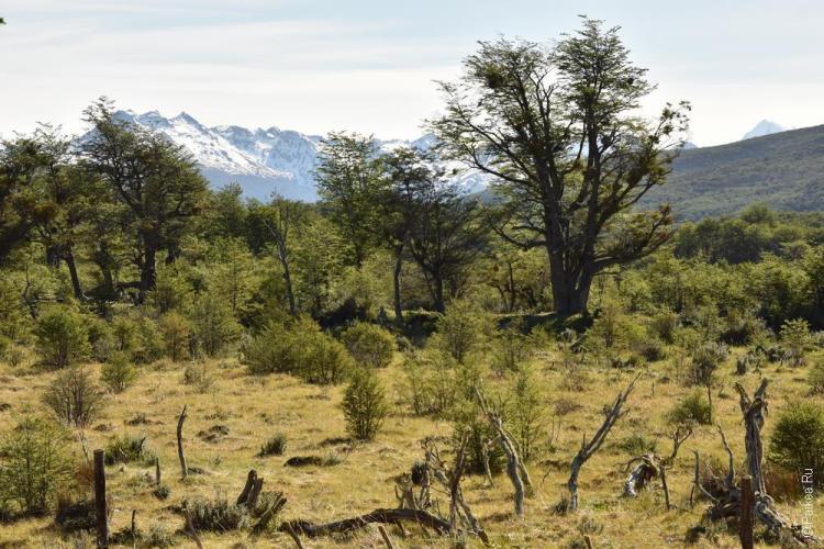 тьерра дель фуэго парк огненная земля 104