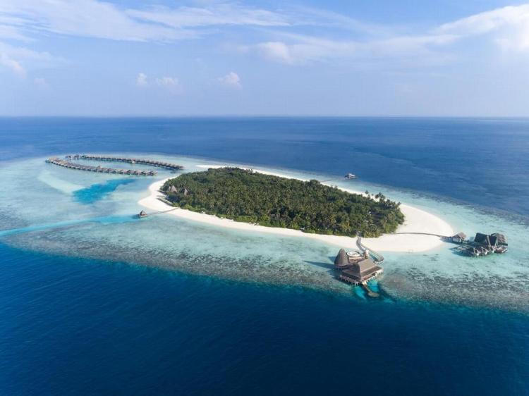 мальдивы отели резорты с рифом для снорклинга 8