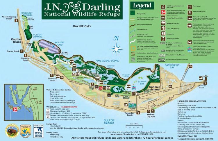 карта динг дарлинг