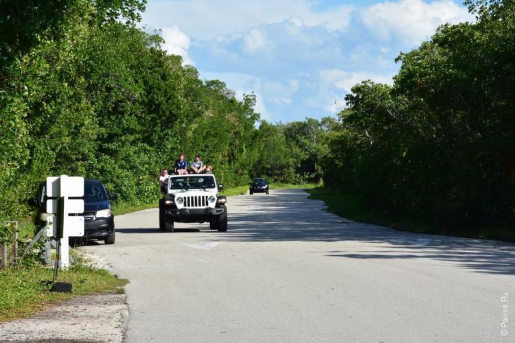 заповедник динг дарлинг на острове санибел, флорида, сша / ding darling national wildlife refuge 69