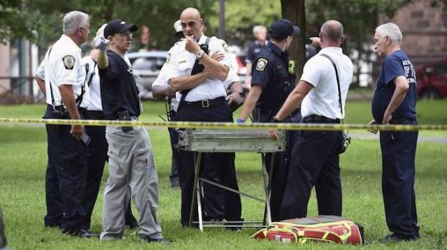 Droga sintética provoca 100 casos de overdose em 36 horas em um parque dos EUA